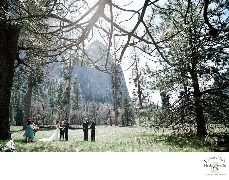 Yosemite elopement ceremony at El Capitan Meadow