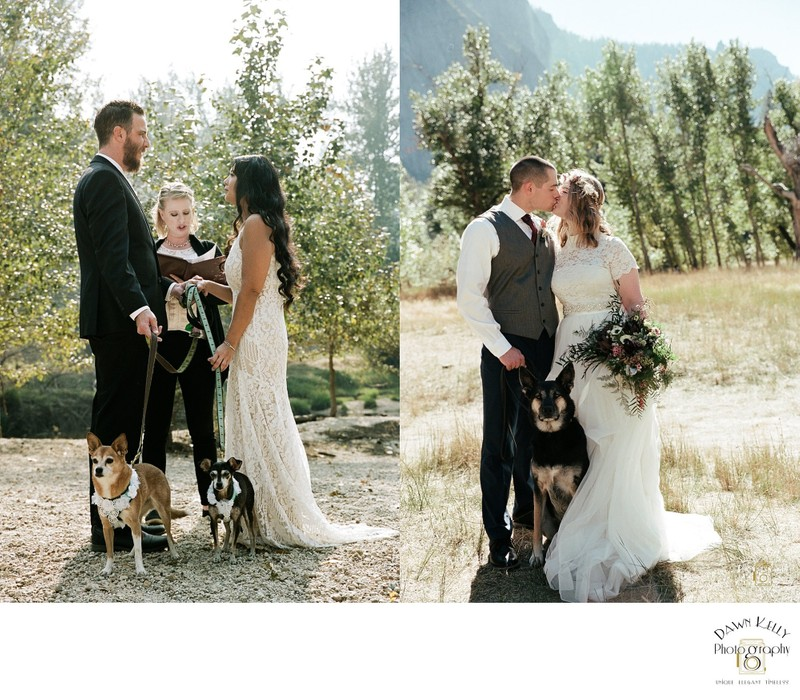 Yosemite elopement ceremony with dog