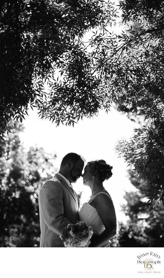 Intimate backyard wedding bride and groom