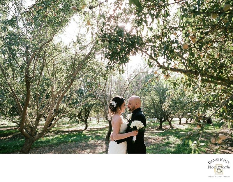 Modesto California intimate backyard wedding