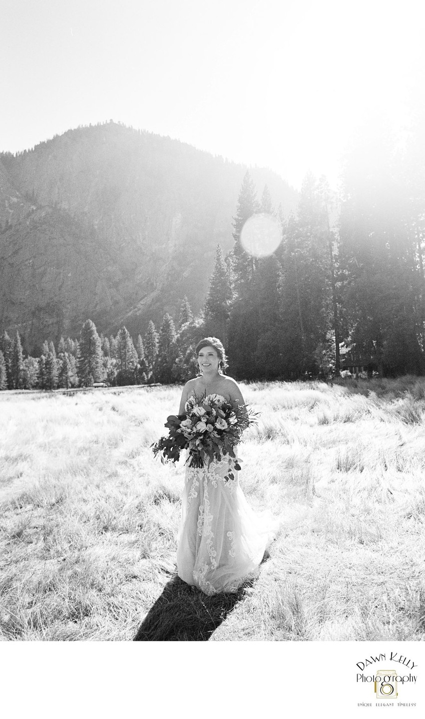 Bride in a Yosemite meadow