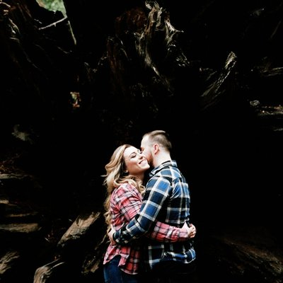 Engagement session in Calaveras Big Trees