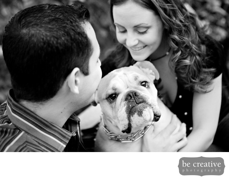 hoboken engagement photos dog nj ny wedding photographer