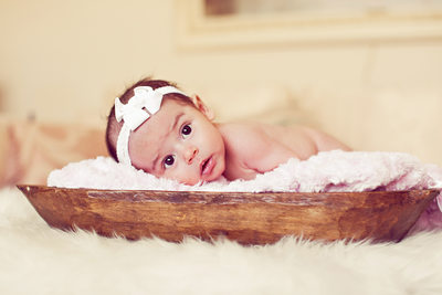 newborn photographer ny nj best of bergen county