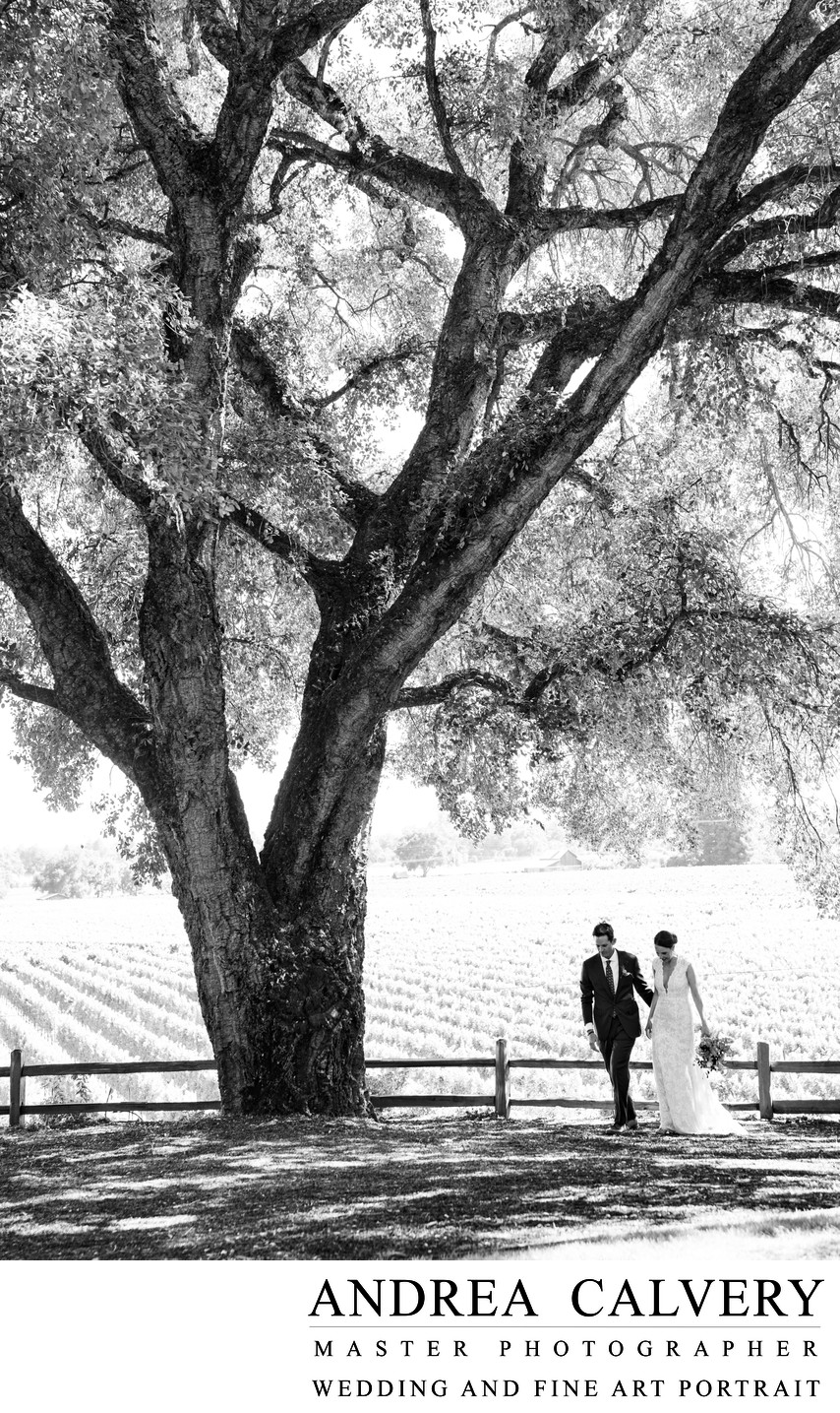 Dallas Top Wedding Photographer Black and White