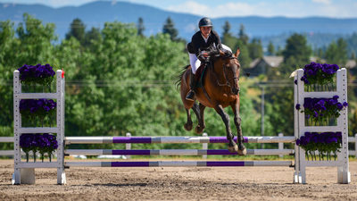 The Big Equestrian Jump