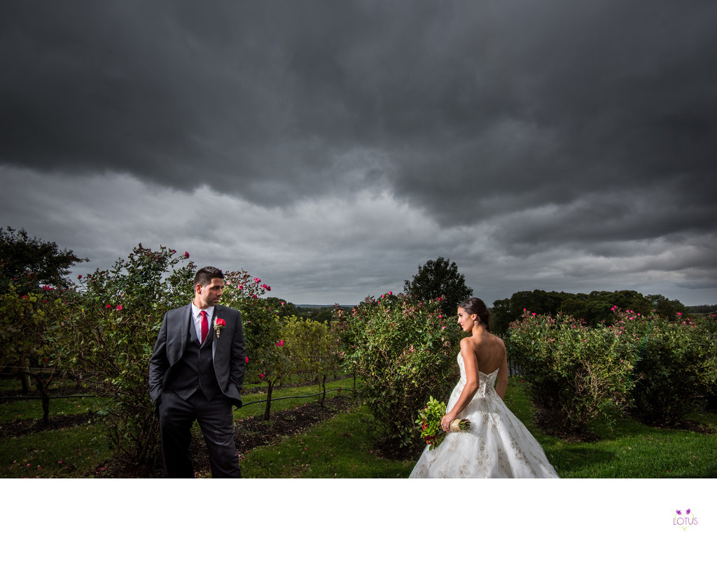 Giorgio's Baiting Hollow Wedding Photos - Modern Images