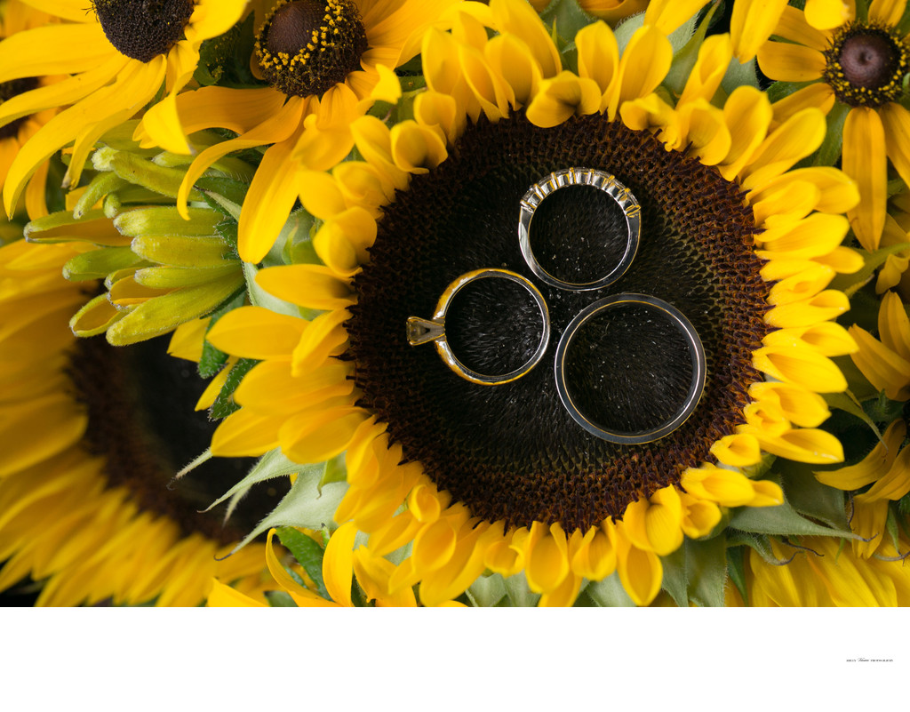 Sunflowers | Wedding Ring photos