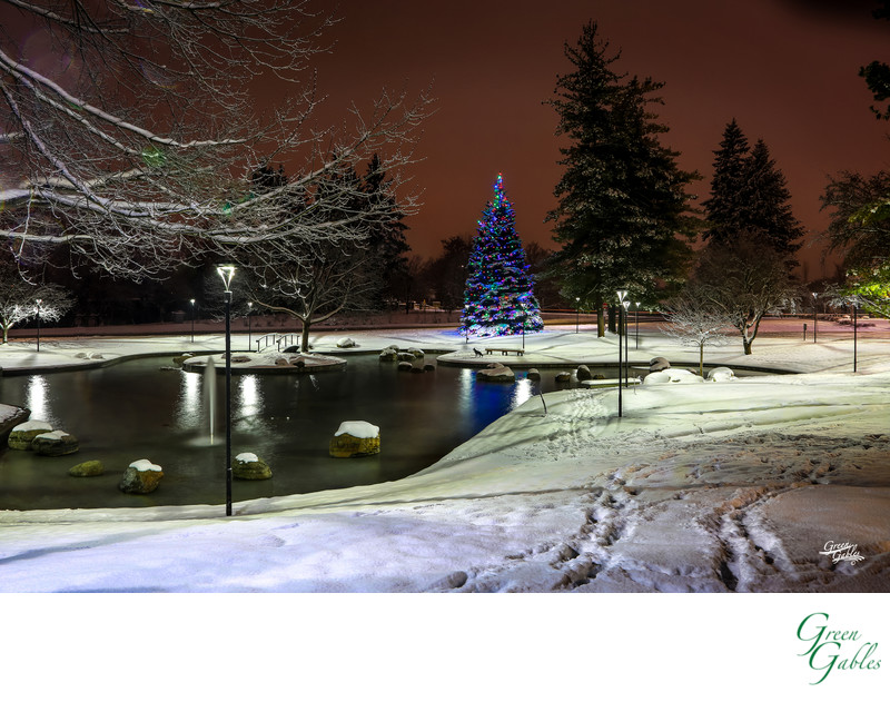 Night photography of Avista Corp, Spokane, WA
