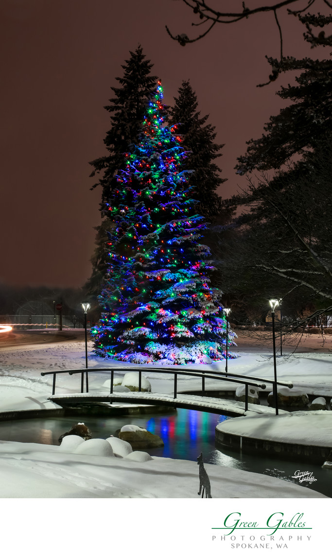 Christmas lighting by Senske, Spokane, WA