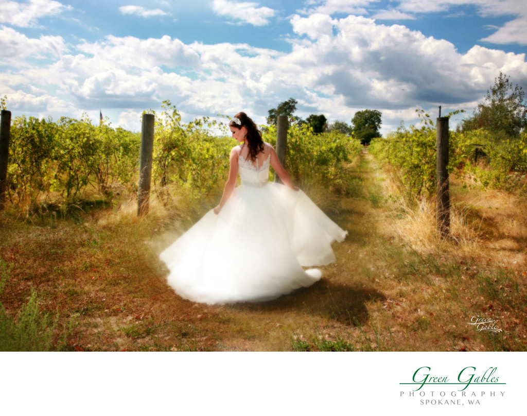 Twirling in the vineyard, Trezzi Farm Winery