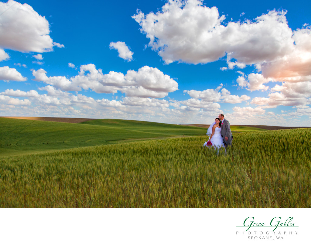 destination wedding with bride & groom in a wheat field