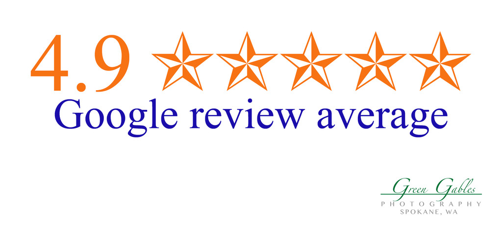 Google Review average-4.9