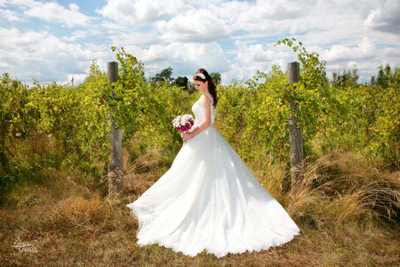 Trezzi Farm Winery, bride in the vineyard