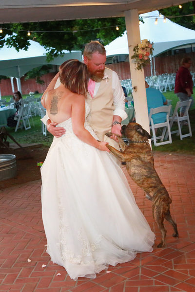 bride and groom dancing with their dog