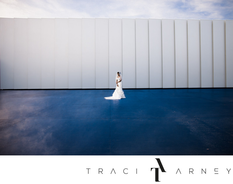 Bridal Portrait On Blue Sky Floor, NC Museum of Art