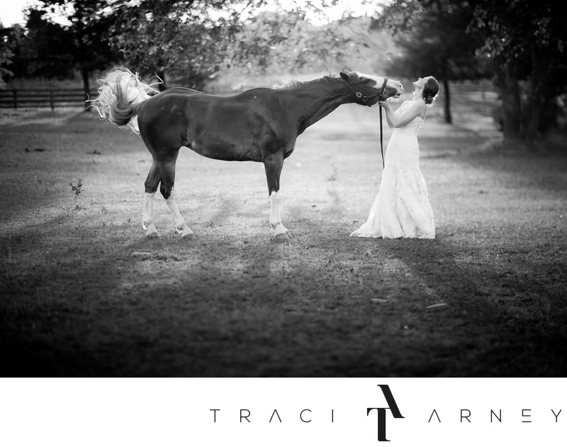 Bridal Session  with Sneezing Horse, Greensboro, NC