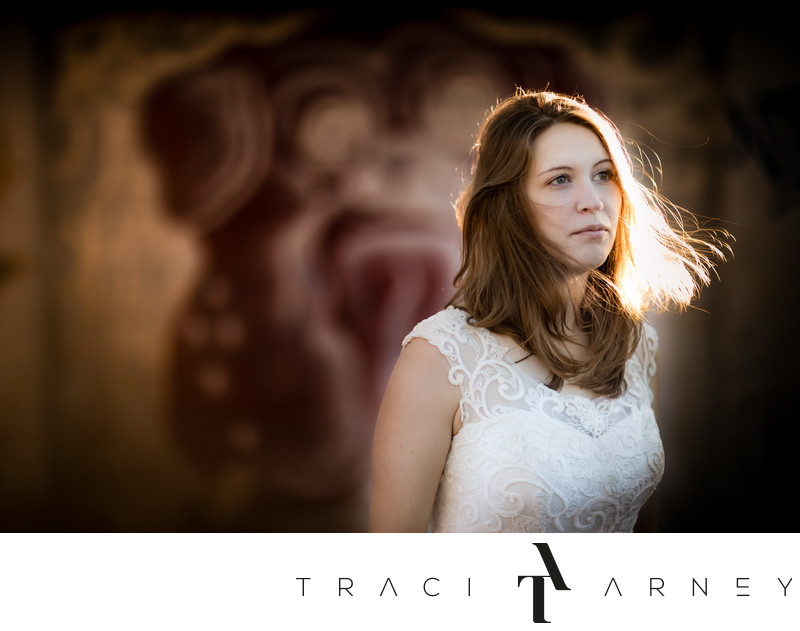 Charlotte Bridal Session Best Wedding Photographer