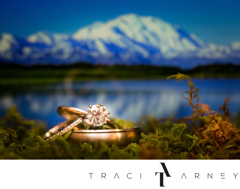 Wonder Lake Denali National Park Asheville Wedding
