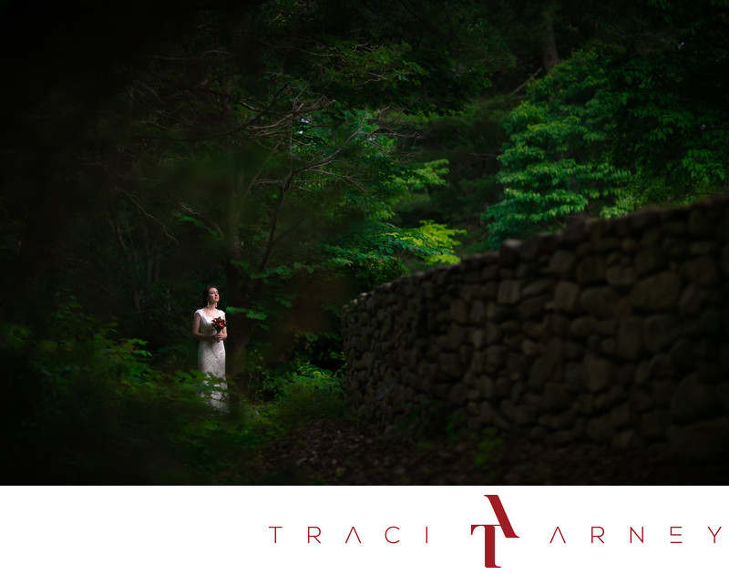 Forest Mountainside Bridal Session, Blue Ridge Parkway