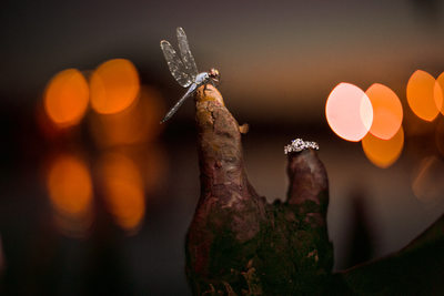 New Bern Lakeside Wedding Photographer Ring Shot