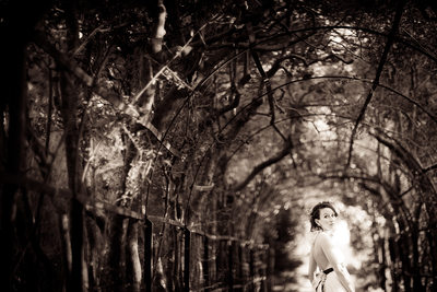Bridal Session in Arbor Tunnel, New Bern Tryon Palace