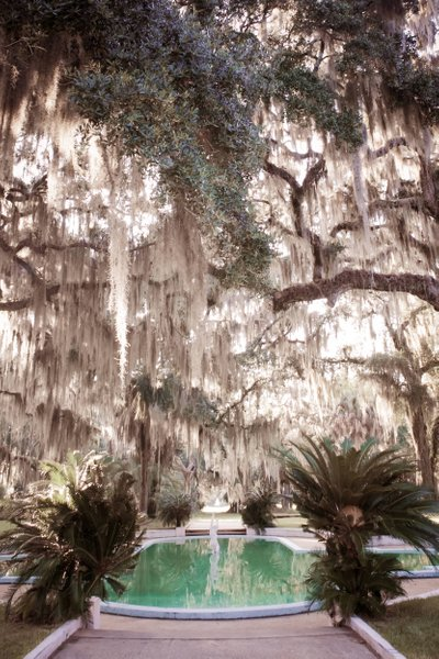 Wedding Photographers Reynolds Mansion Sapelo Island GA