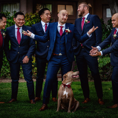 langham pasadena wedding wire