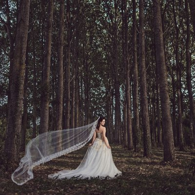 Los Angeles Forest Wedding Venues.