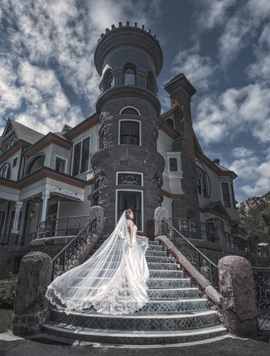 A Bride on the Stairs in Front of Newhall Mansion