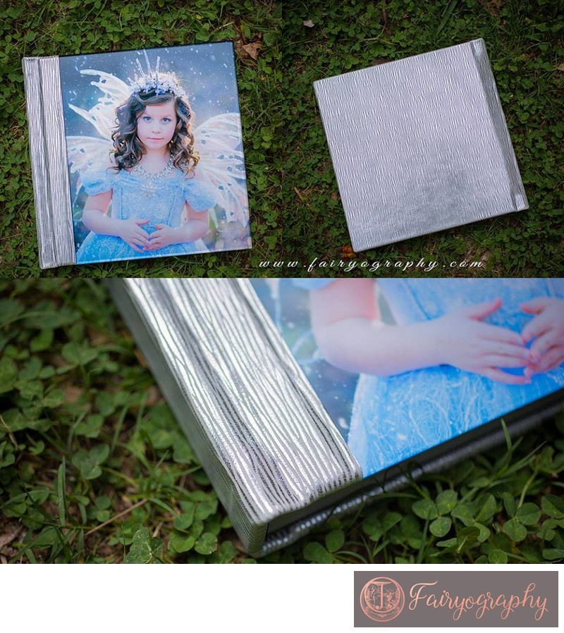 Silver birch leather ice fairy album