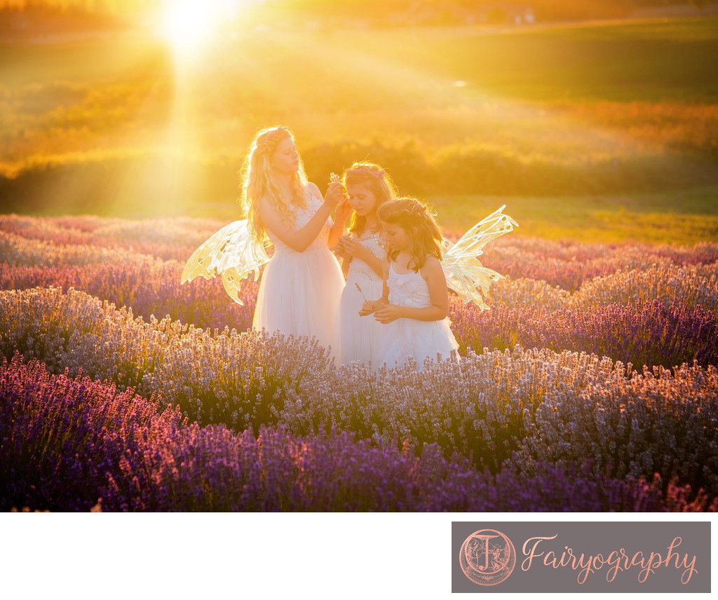 Seattle Lavender Farm Photographer