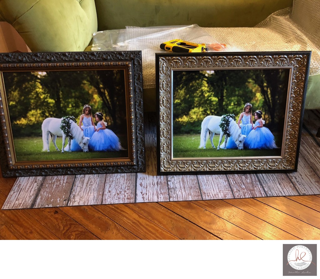 Framed unicorn portraits Athens GA