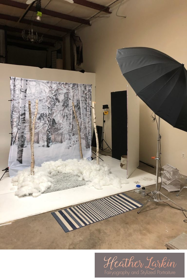 Fairyography in studio snow set 6