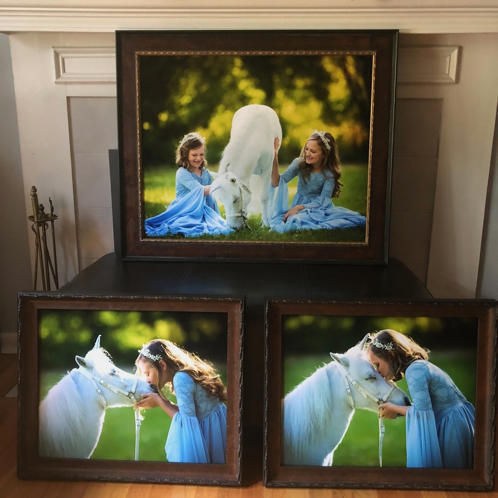 Framed Prints from Fairyography in Athens ga