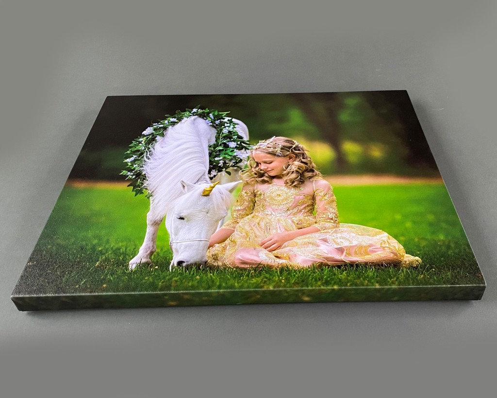 Fairyography printed canvases