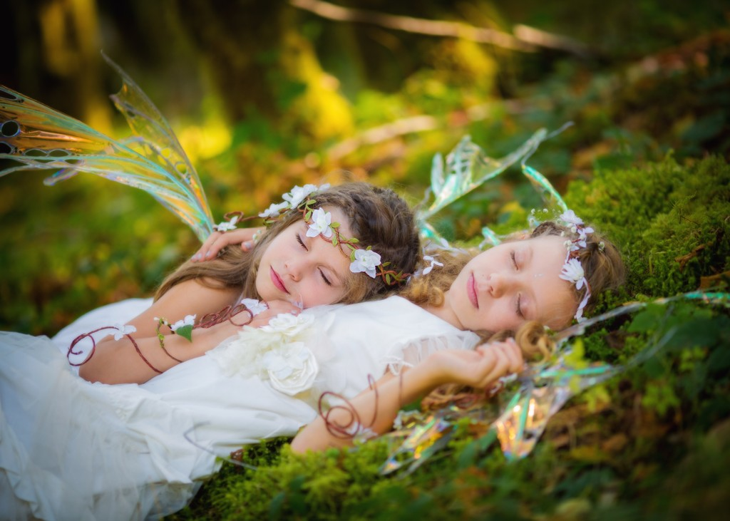 Fairy Sisters in Seattle