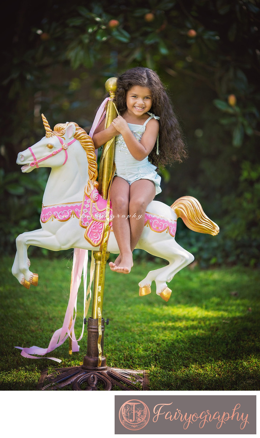 Carousel horse photographer