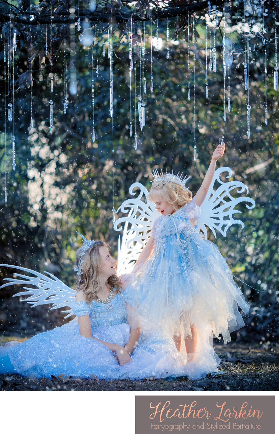 Frozen Ice Fairy Sisters