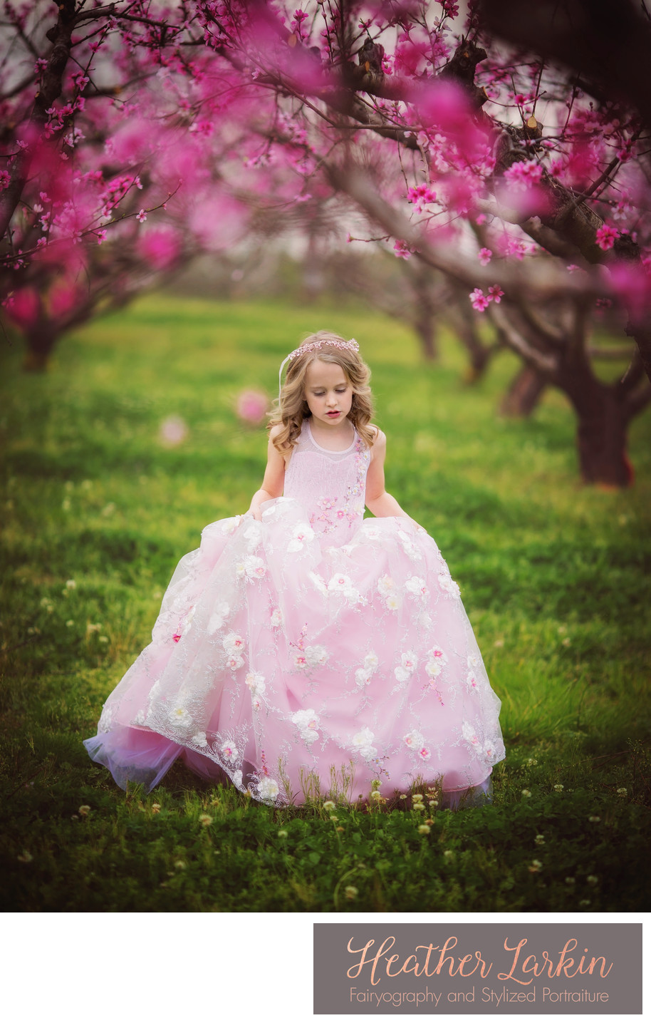 Peach orchard Watkinsville photographer