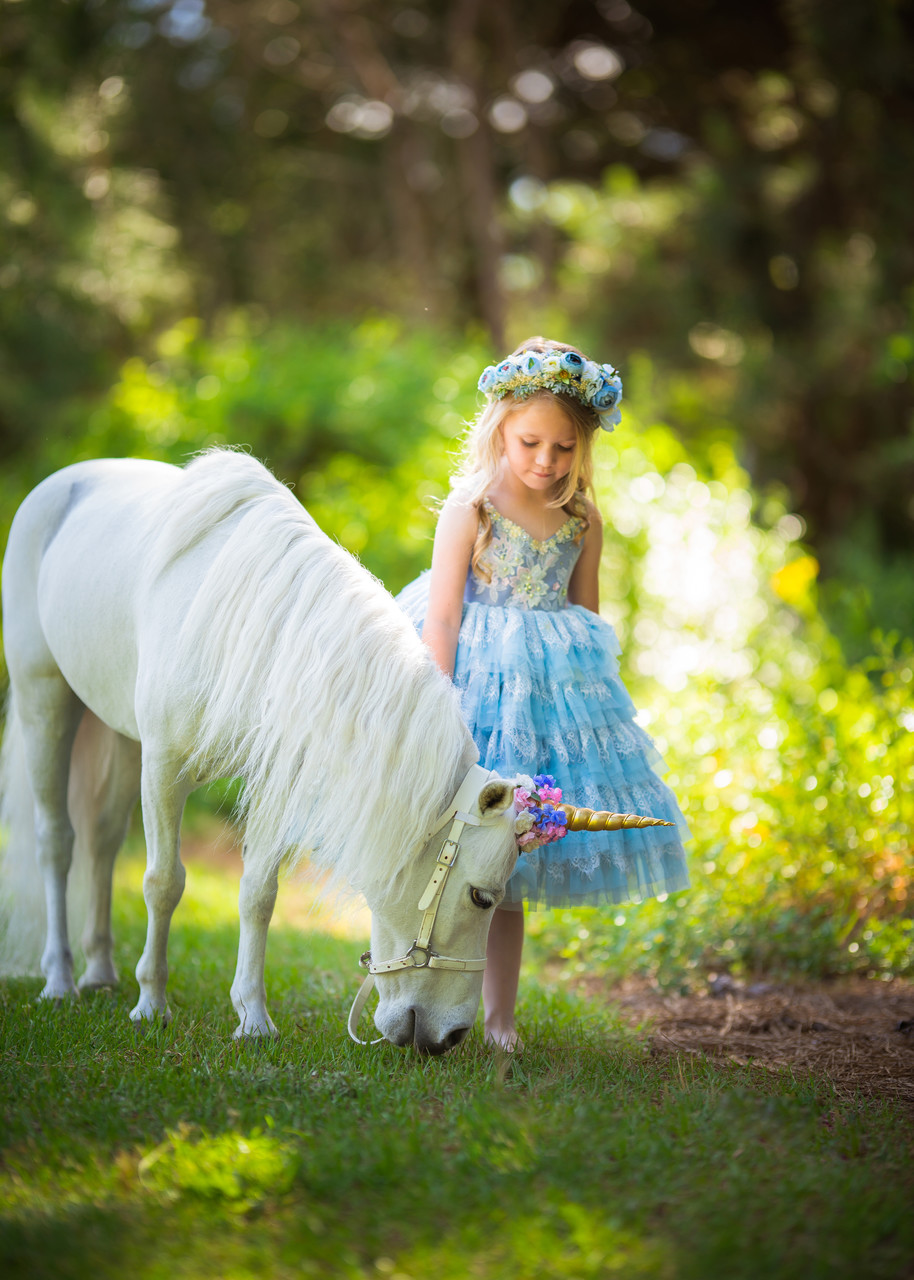 Magical unicorn Photos Watkinsville
