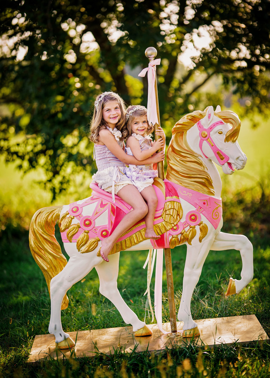Carousel Horse Photography Sessions