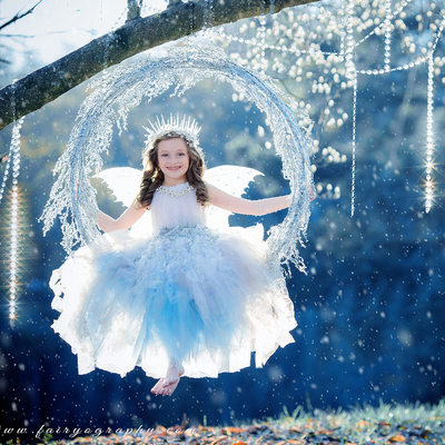 Ice Fairy Swing