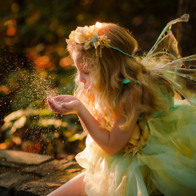 Glitter fairy photos
