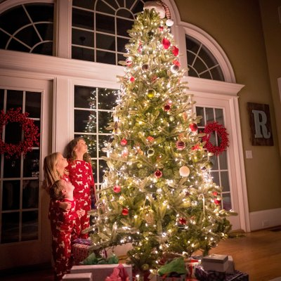 Holiday Tree Photographer - Sigma Award Winner