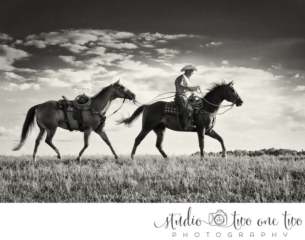 Equine Photographers in SC