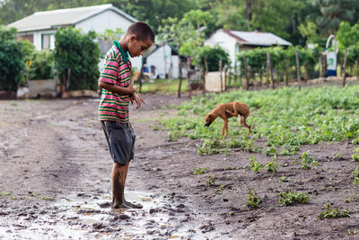 Boy Plays in Mud while Dog Scratches Himself