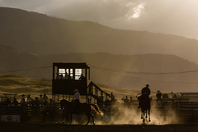 Saddle Bronc Rider in Sunset Light in a Montana Rodeo