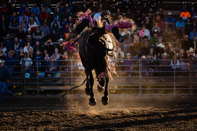 Saddle Bronc Rider at Ennis Rodeo