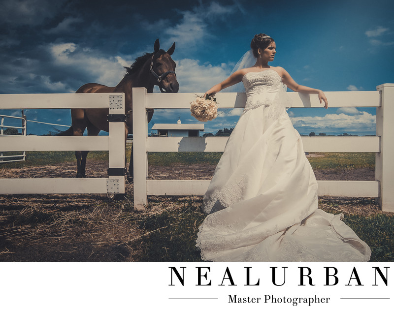 buffalo country wedding horses fox valley country club